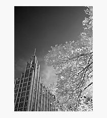 The Manchester Unity Building Photographic Print