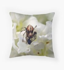 One day I saw a fly die.. Throw Pillow