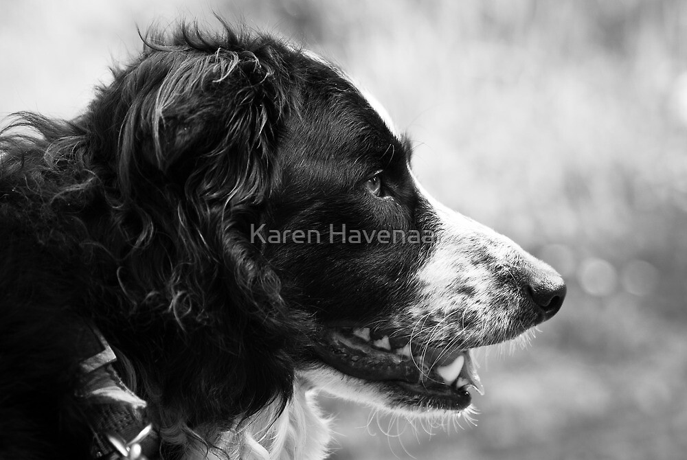 En Profile by Karen Havenaar