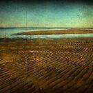 Biloxi Low Tide by Jonicool