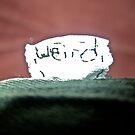 Weird by weirdartist