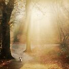 In the autumn of his life... by Yool