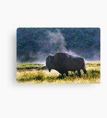 Buffalo Steam-Signed-#2170 Canvas Print