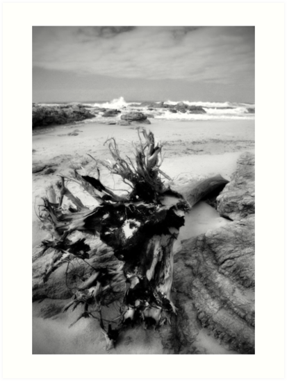 Adrift on Umzumbe beach, South Africa by Sharon Bishop