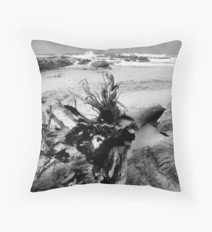 Adrift on Umzumbe beach, South Africa Throw Pillow