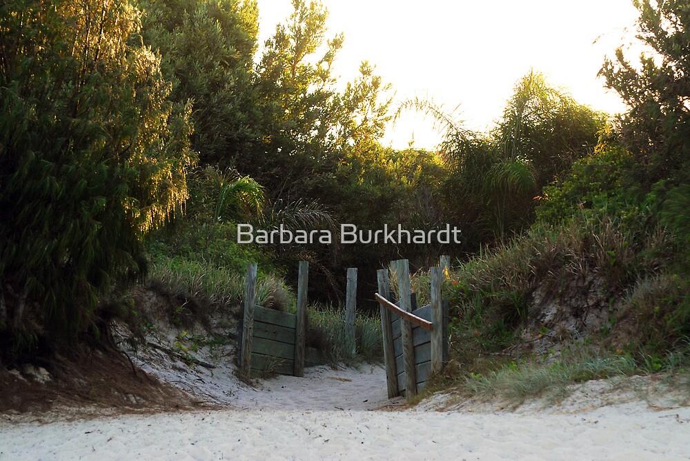 On the Beach - Bribie  Island by Barbara Burkhardt