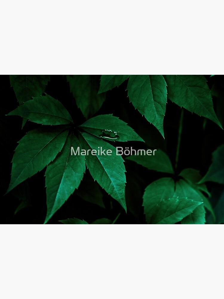 Dark Leaves 7 by MarBoe
