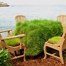 Green Tea.....Anyone? by Michael John