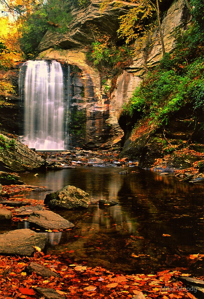 Crystalline Flow 3 by Miles Moody
