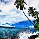 Lahaina Ocean Spray by Benjamin Padgett