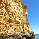 Beach Rocks von Sandra Fortier