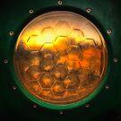 Portal to Playtime by Bob Larson
