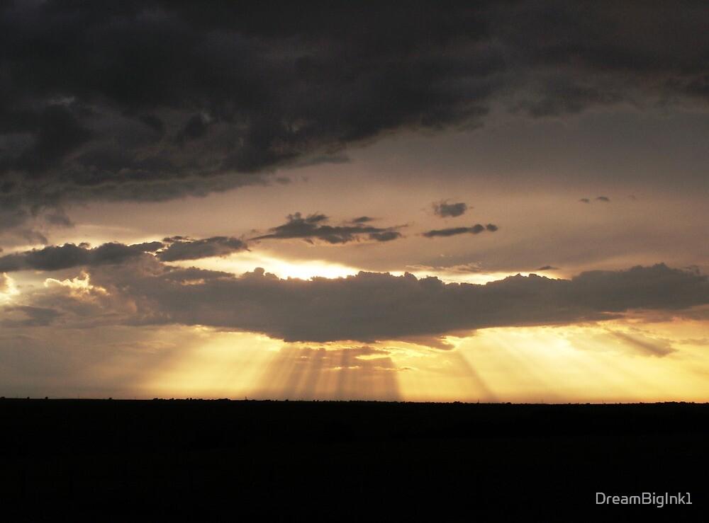 Evening Sunshine by DreamBigInk1