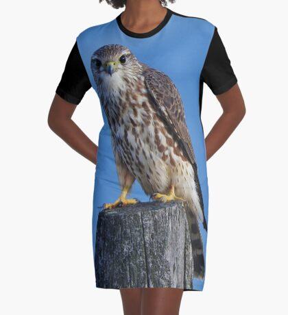 Hey. Graphic T-Shirt Dress