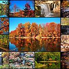 Fall Awesome Colors by kentuckyblueman