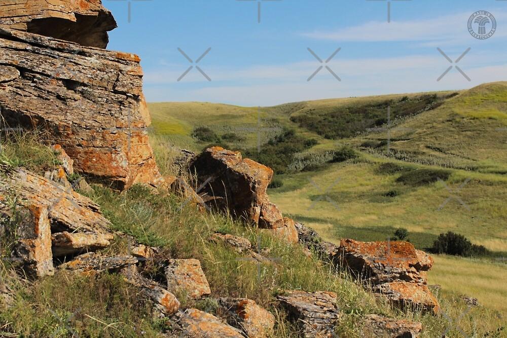 Rocks on Buffalo Jump by madeinsask