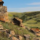 Rocks on Buffalo Jump by madeinsask