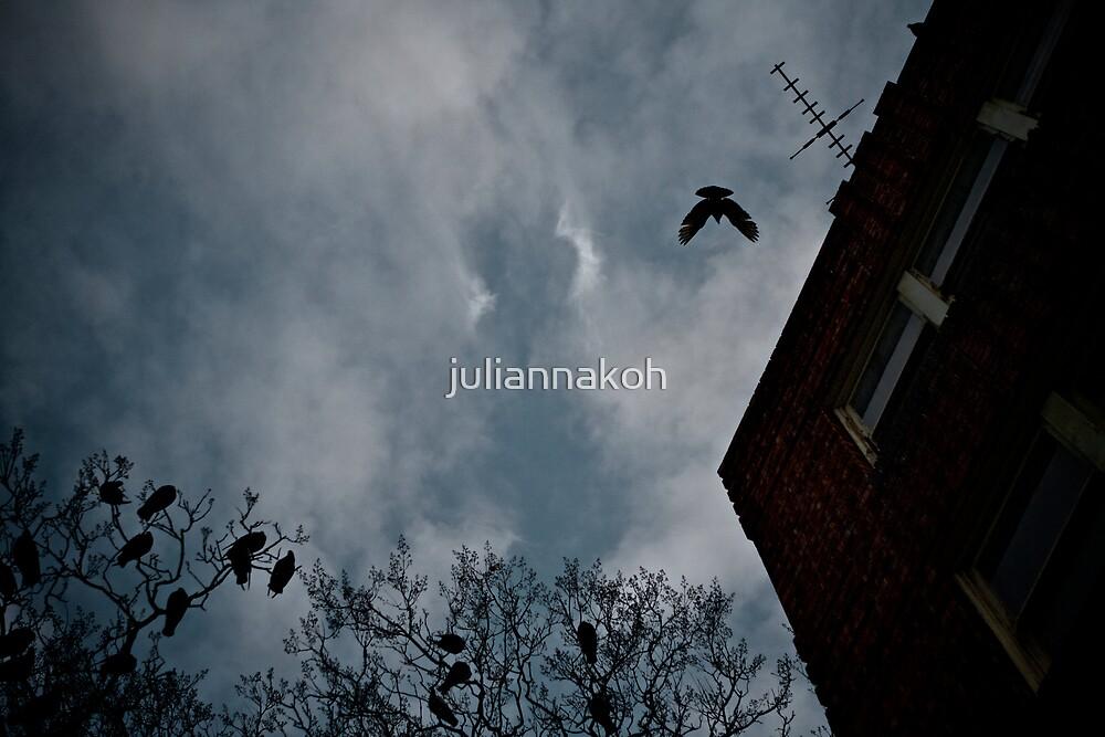 Birds of Dusk by juliannakoh