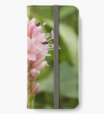 Persicaria Amphibia iPhone Wallet