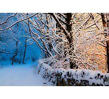 winter sunset light Photographic Print