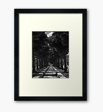 Throwing Shade Framed Print