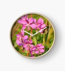 Fireweed Wildflower Clock