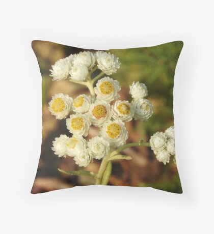 Pearly Everlasting Wildflowers Throw Pillow