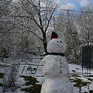 First snow fall by TaraHG