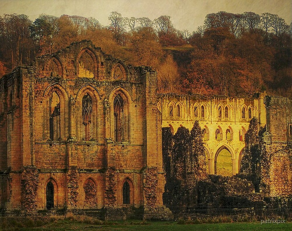 The Ruins Of Rievaulx Abbey by patrixpix