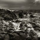 Donaghadee by Jonny Andrews