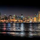 Chicago skyline at midnight by Steve Ivanov
