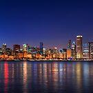 Chicago skyline by Steve Ivanov