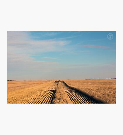 Swathing Straight Ahead Photographic Print