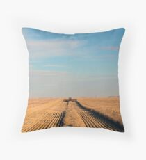 Swathing Straight Ahead Throw Pillow