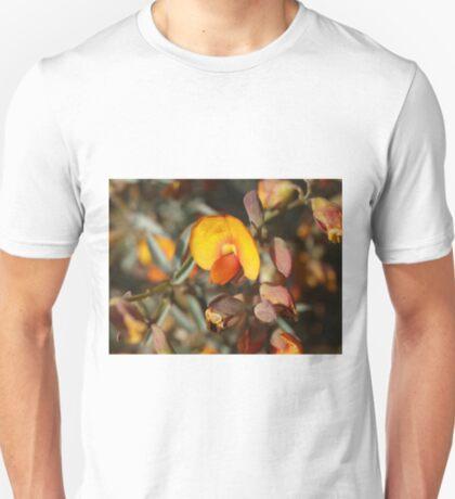 Gastrolobium velutinum T-Shirt