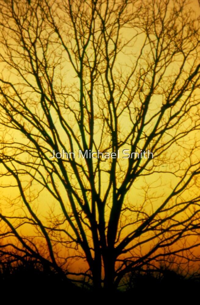 Golden Pecan by John Michael Smith