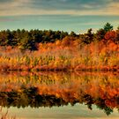 Autumn Reflections on the Pond by Monica M. Scanlan