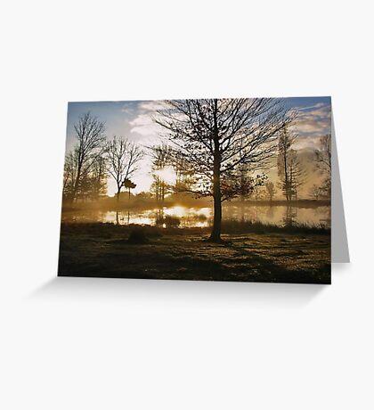 Sunrise and Tree Shadows Greeting Card