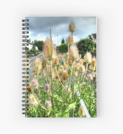 Roadside beauty Spiral Notebook