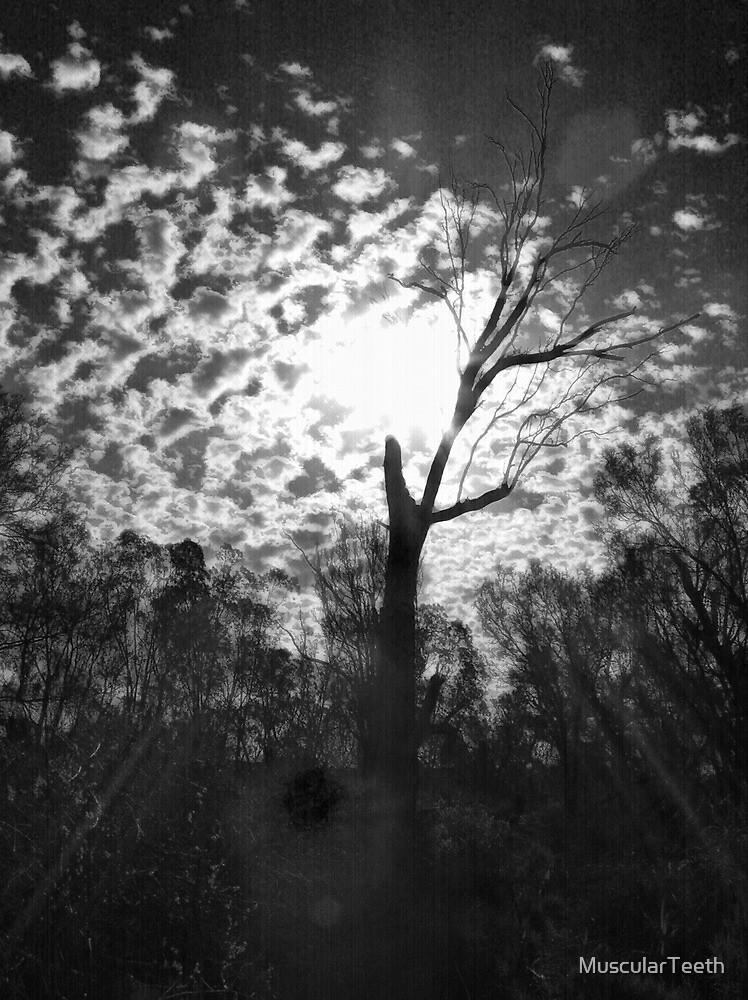 A Tree by MuscularTeeth