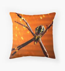 The sun sets for EDNA Throw Pillow