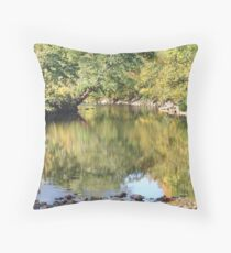 Reflections In The Roanoke River Throw Pillow