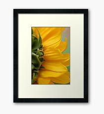 Hello Sun! Framed Print