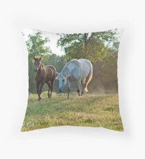 Where You Lead, I will Follow Throw Pillow