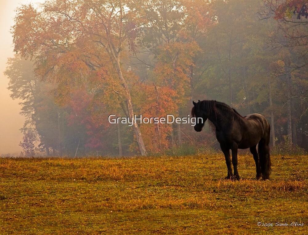 Autumn Contemplation by GrayHorseDesign