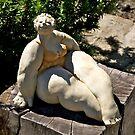 Garden Sculpture, NZ. by johnrf