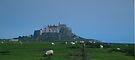 Lindisfarne Castle by WatscapePhoto