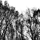 Let the trees come and get you by DearMsWildOne