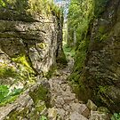 Trow Gill by Stephen Knowles
