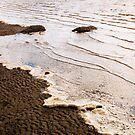 Sea Foam Afternoon by Joy  Gerow